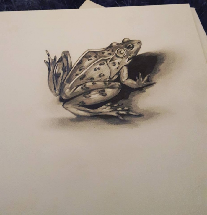 """Popular Frog Pencil Sketch Courses Jodie Forshaw On Twitter: """"messing Around With Shading :-) #artist Photo"""