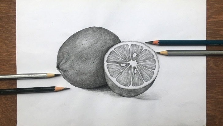Popular Fruits Pencil Shading Techniques How To Draw Lemon In Pencil Sketch | Still Life | Fruit Drawing Step By Step Photo