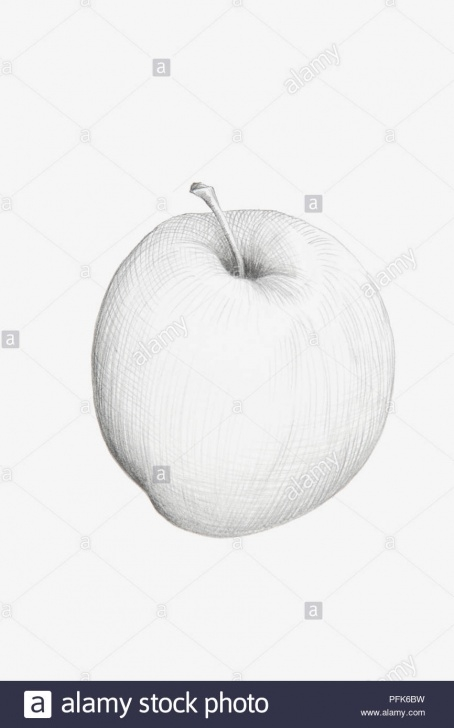 Popular Pencil Drawing Of Apple Step by Step Black And White Pencil Drawing Of Apple Stock Photo: 216166381 - Alamy Pic