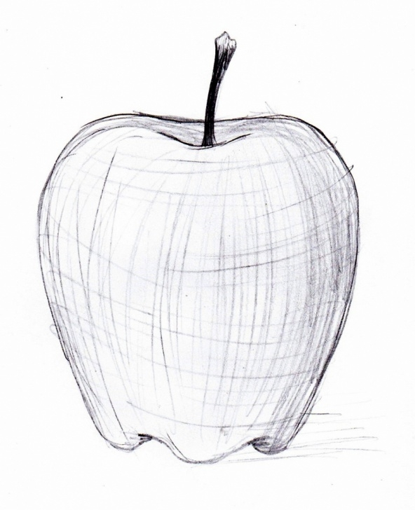 Pencil Sketch Of Apple