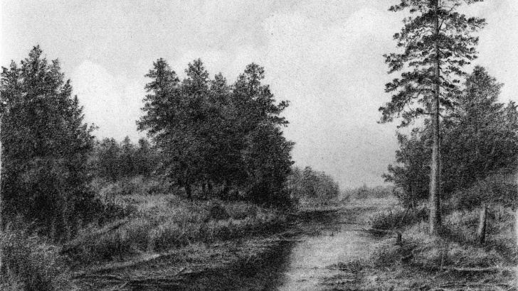 Popular River Pencil Drawing Courses Drawing Pencil | How To Draw A Landscape With Trees And A Small Photos