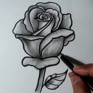 Popular Rose Pencil Drawing Step by Step How To Draw A Rose || Pencil Drawing, Shading For Beginners Photos