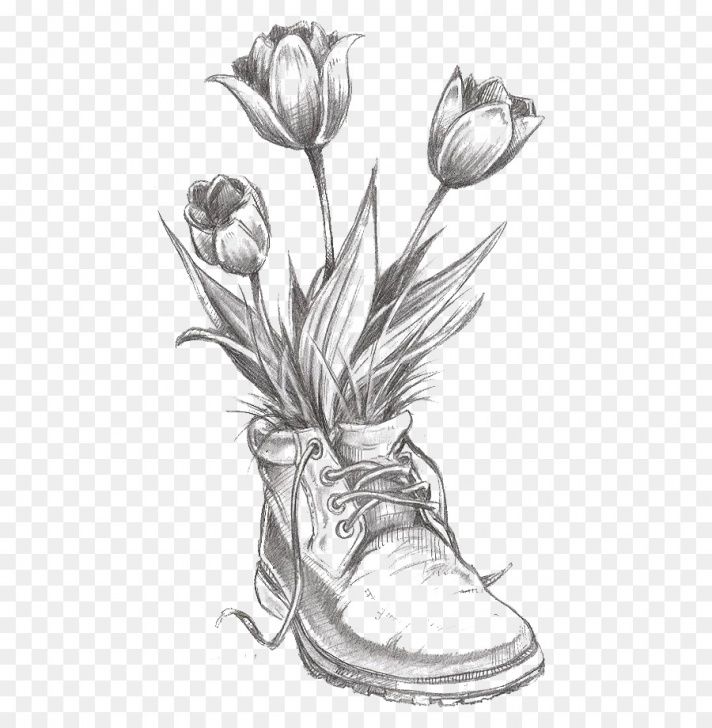 Popular Tulip Drawings In Pencil Step by Step Tulip Flower Drawing And Drawing Flower Tulip Pencil Sketch - Tulip Images