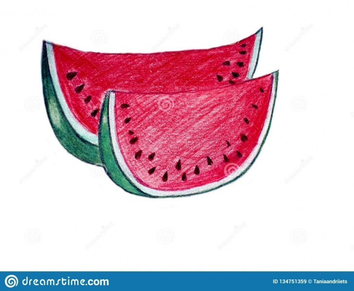 Popular Watermelon Pencil Drawing for Beginners Pencil Drawing Of Watermelon Stock Illustration - Illustration Of Photos