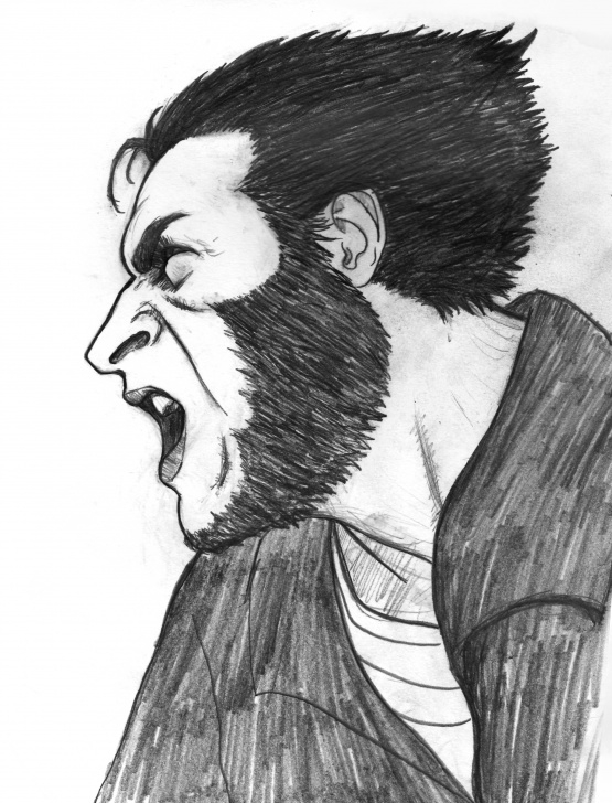 Popular Wolverine Pencil Drawing Simple Wolverine - Pencil Drawing — Steemit Images
