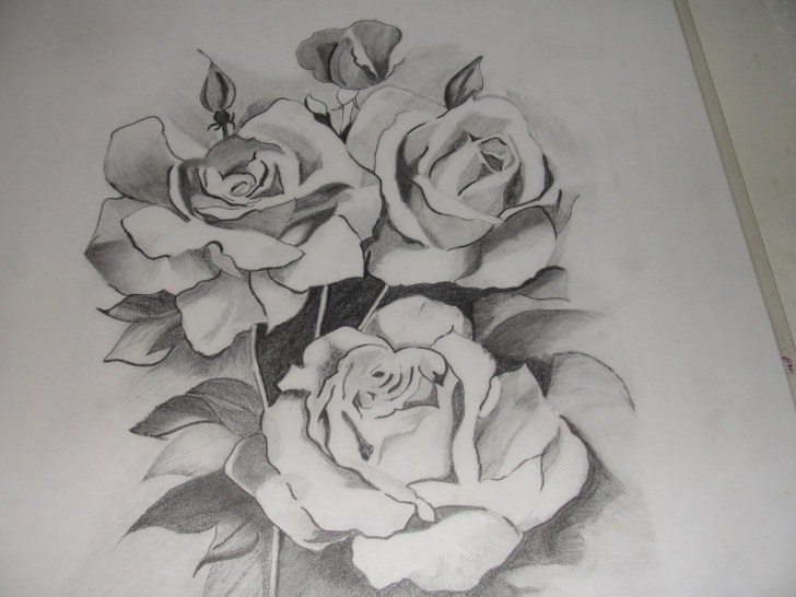 Remarkable Beautiful Pencil Sketches Of Roses Simple Pencil Sketch Of Rose Flower At Paintingvalley | Explore Images