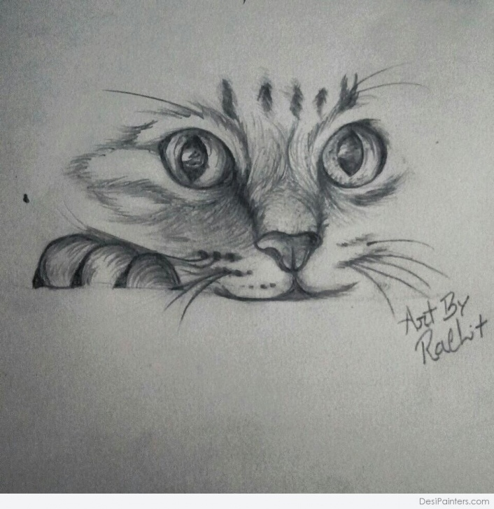 Remarkable Cat Pencil Sketch Tutorials Pencil Sketch Of Cute Cat | Desipainters Picture