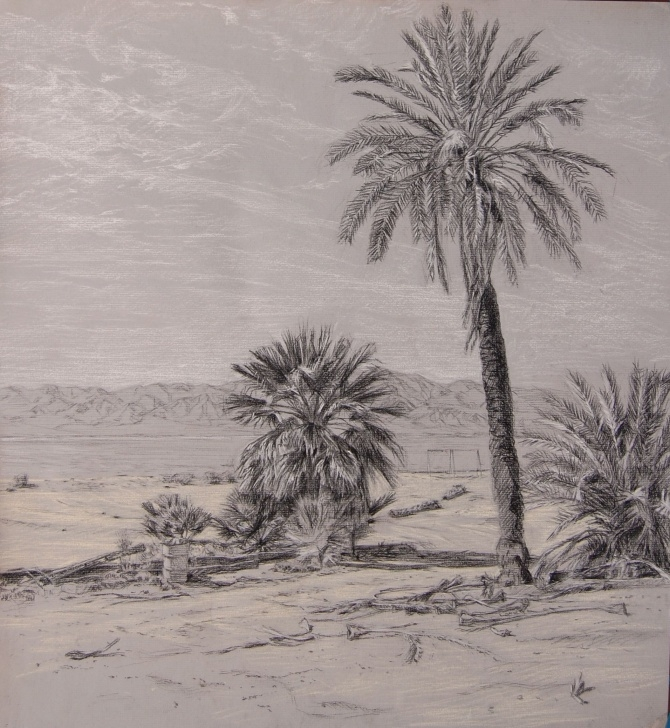 Remarkable Desert Pencil Drawing Ideas Pencil Sketches Of Desert Painting - 3D Drawing Ideas   Desert Pic