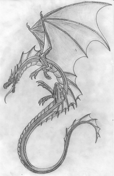 Remarkable Dragon Drawings In Pencil Easy Techniques for Beginners Cool Dragon Sketches At Paintingvalley | Explore Collection Of Pictures