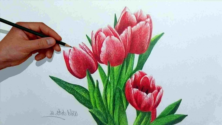 Remarkable Easy Colored Pencil Drawings For Beginners Simple Beginner Easy Colored Pencil Drawings Picture