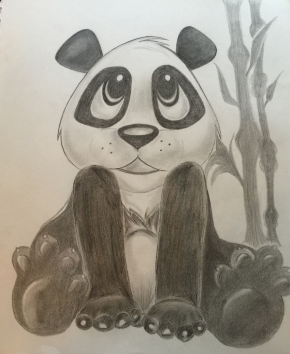 Remarkable Panda Pencil Sketch Easy Panda Bear | Zlew21 | Foundmyself Photos