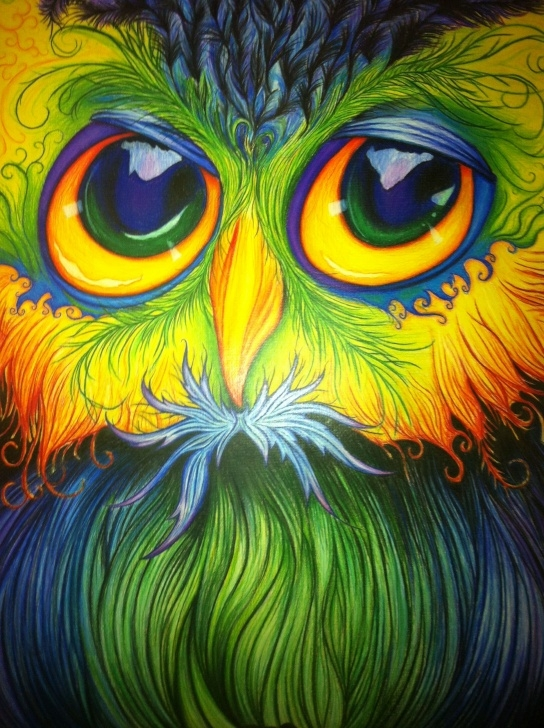 Remarkable Pencil Crayon Art Courses Pencil Crayon Drawing Of An Owl, All Freehand | My Artwork | Crayon Picture