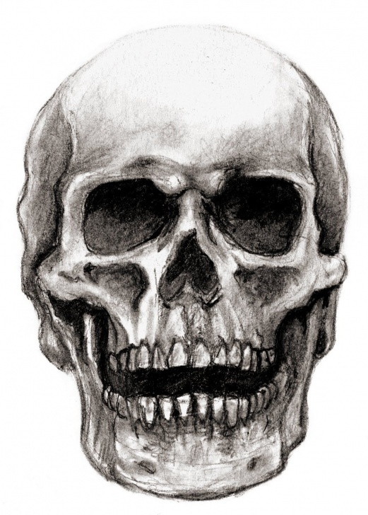 Remarkable Pencil Drawings Skulls Tutorials Skull Pencil Sketch At Paintingvalley | Explore Collection Of Images