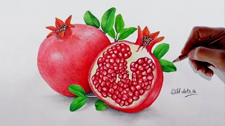 Remarkable Pomegranate Pencil Drawing Tutorial How To Draw A Pomegranate - Easy And Simple Steps | Pictures