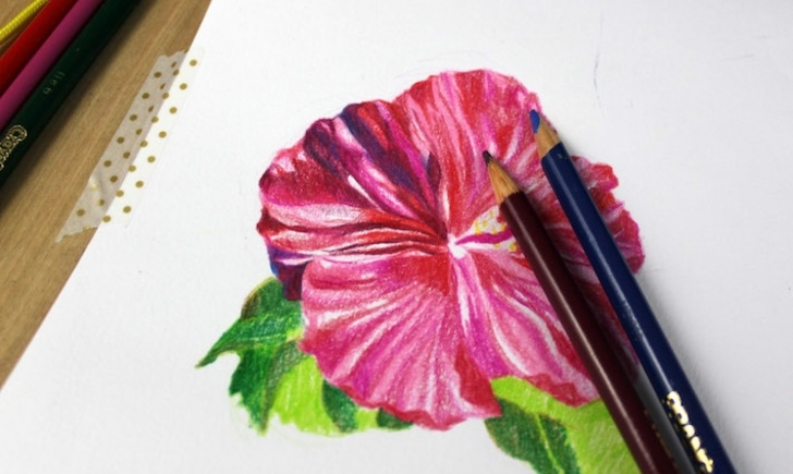 Remarkable Shading Flowers With Colored Pencil Free Drawing Flowers In Colored Pencil: A Simple Tutorial Picture