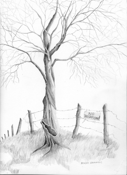 Remarkable Tree Pencil Shading Simple Pencil+Drawings | Pencil Drawing Of Tree | Ideas In 2019 | Pencil Images