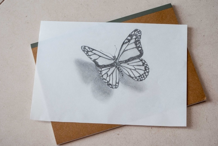 Stunning 3D Butterfly Drawings In Pencil Simple 3D Butterfly Sketch At Paintingvalley | Explore Collection Of 3D Image