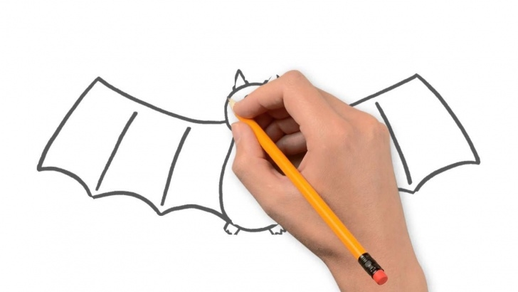 Stunning Bat Pencil Drawing Tutorial Bat Animals Pencil To Draw Step By Step Photo