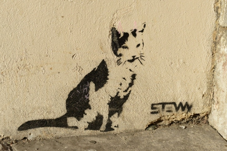 Stunning Cat Graffiti Stencil for Beginners Cat Art | Small Animal Talk: Animals In Bristol Street Art | Cool Photos