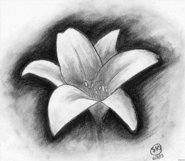 Stunning Charcoal Drawing For Kids Ideas Easy Charcoal Drawing Ideas For Kids Charcoal Drawings Flowers Images