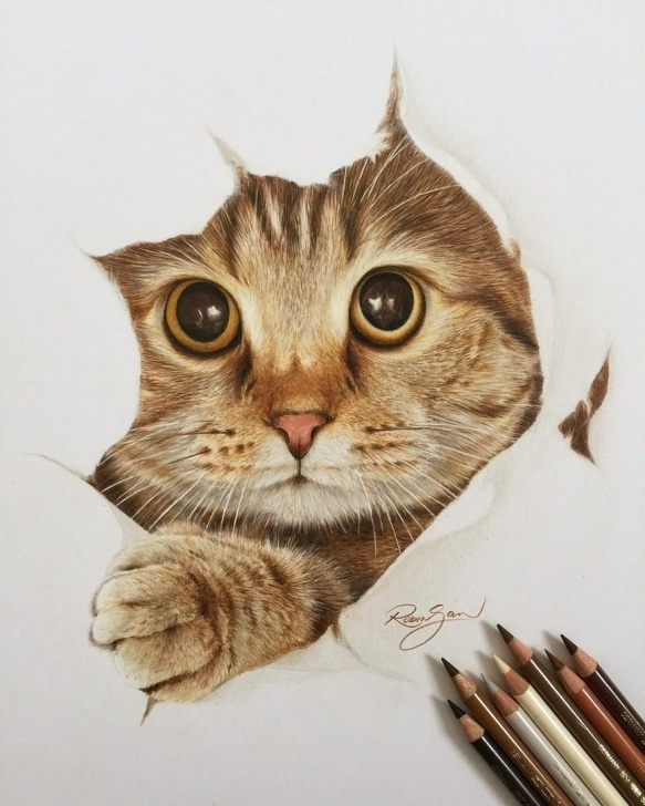 Stunning Colored Pencil Animals Step by Step Realistic Color Pencil Animal Drawings | Art | Pencil Drawings Of Pics