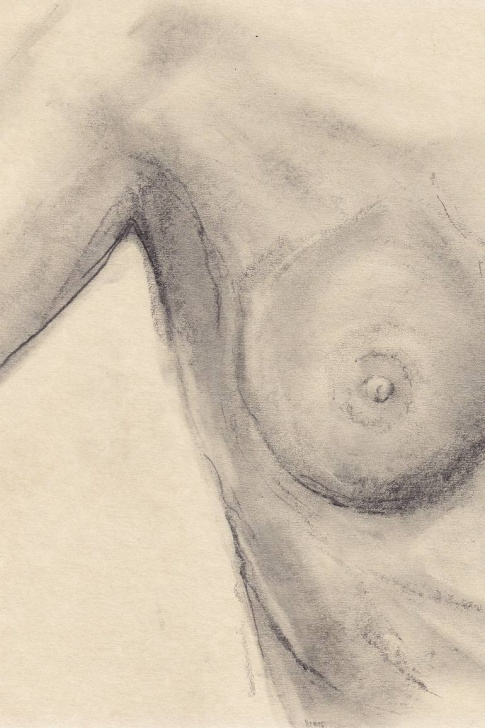 Stunning Couple Pencil Drawing Simple Breast; After Edward Weston: Pencil Drawing On Handmade Paper Pics