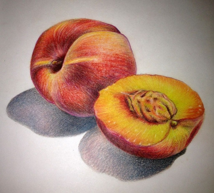 Stunning Drawing Fruit With Colored Pencils Techniques Peaches Lauren Yurovich | Colored Pencils In 2019 | Color Pencil Art Picture
