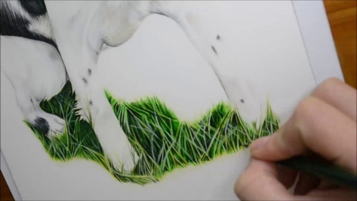 Drawing Grass With Colored Pencil