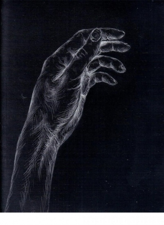 Stunning Drawing On Black Paper With White Charcoal Techniques White Charcoal Drawing More Black Paper Art Charcoal Drawings Art 2 Image