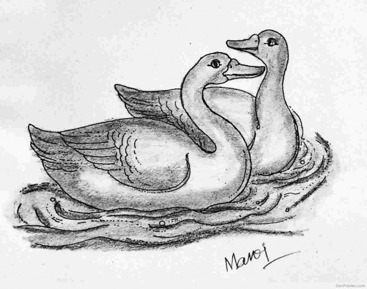 Stunning Duck Pencil Drawing Techniques Symphony Donald Duck Pencil Sketch Hour Animation Picture