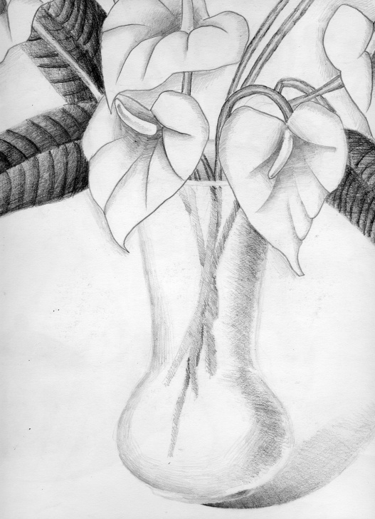 Stunning Flower Vase Pencil Drawing Techniques Pencil Sketch Of Flower Vase - Vase And Cellar Image Avorcor Picture