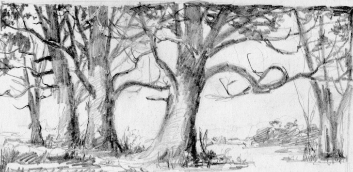 Stunning Forest Pencil Drawing Free Forest Sketch Easy At Paintingvalley | Explore Collection Of Pictures