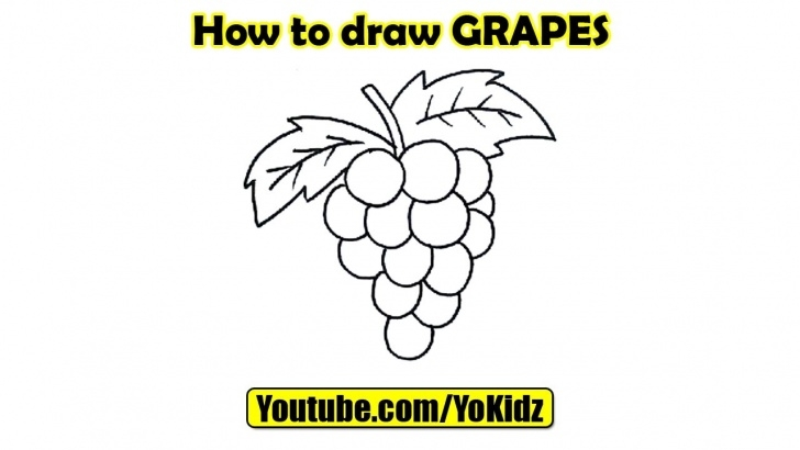 Stunning Grapes Pencil Drawing Techniques How To Draw Grapes Picture
