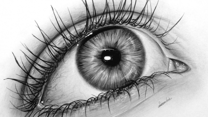 Stunning Graphite Drawing For Beginners Step by Step How To Draw A Realistic Eye With Graphite, Drawing Tutorial | Leontine Van  Vliet Image