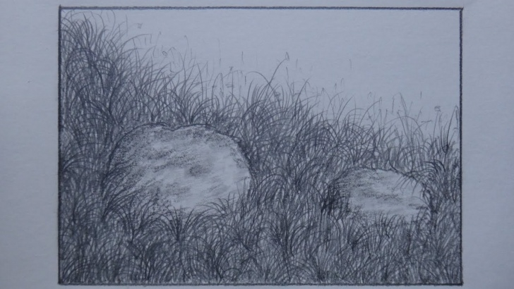 Stunning Grass Pencil Drawing Tutorials How To Draw Grass Using Pencil For Landscape Pictures