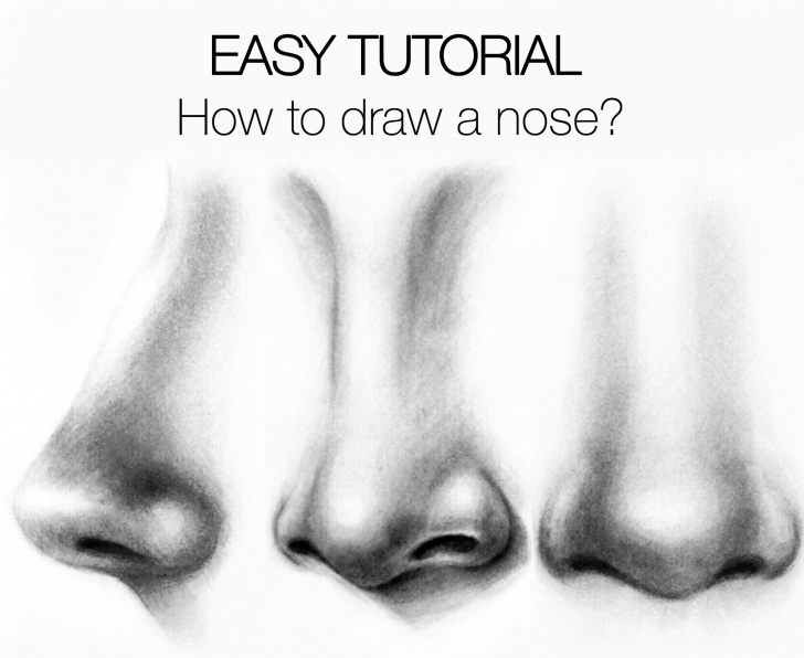 Stunning Nose Pencil Sketch Tutorial Easy Tutorial - How To Draw A Nose? - Silvie Mahdal - The Art Of Pencil Picture