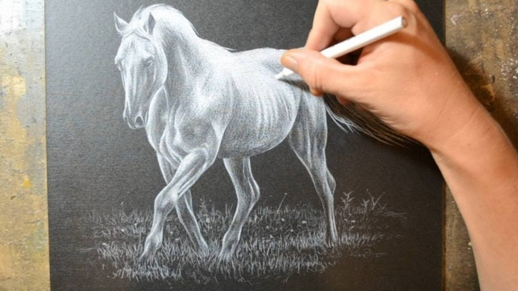 Stunning Pencil Crayon Art Simple Drawing A Horse With A White Colored Pencil Crayon - Youtube | Art Images