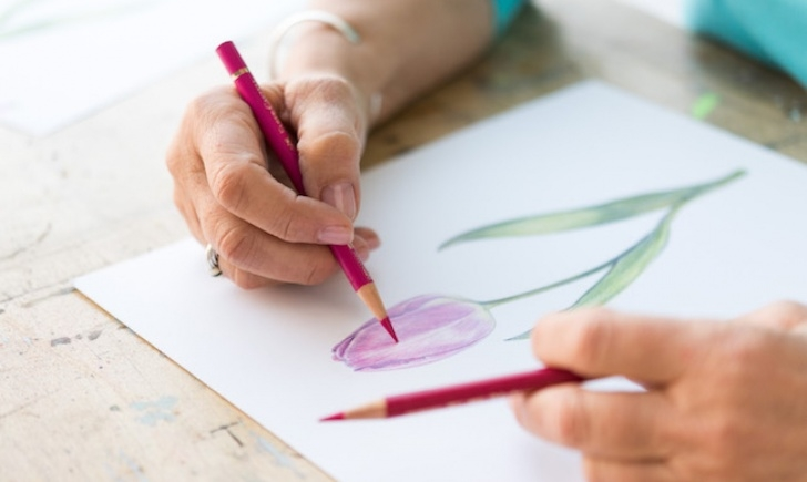 Stunning Simple Colour Pencil Drawing for Beginners 6 Colored Pencil Techniques To Up Your Game Image