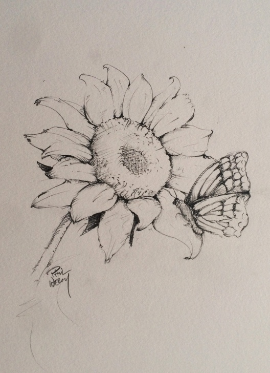 Stunning Sunflower Pencil Drawing Tutorial Sunflower And Butterfly Graphite Pencil Drawing Print Pictures