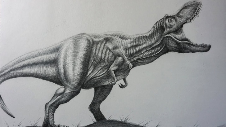 T Rex Pencil Drawing