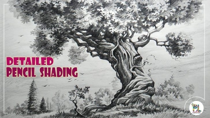 Stunning Tree Pencil Shading for Beginners How To Sketch A Detailed Tree With Pencil | Easy Pencil Art Images