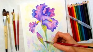 Stunning Watercolor Pencil Art for Beginners Iris Watercolor Pencil Drawing And Painting Tutorial // December Smart Art  Box Photo