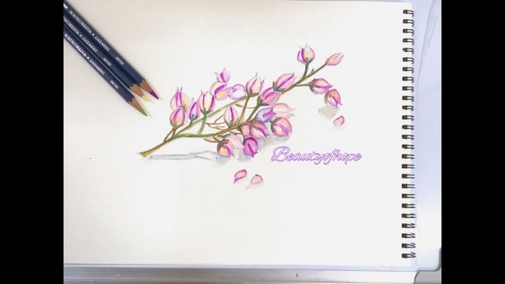 Watercolor Pencil Flowers
