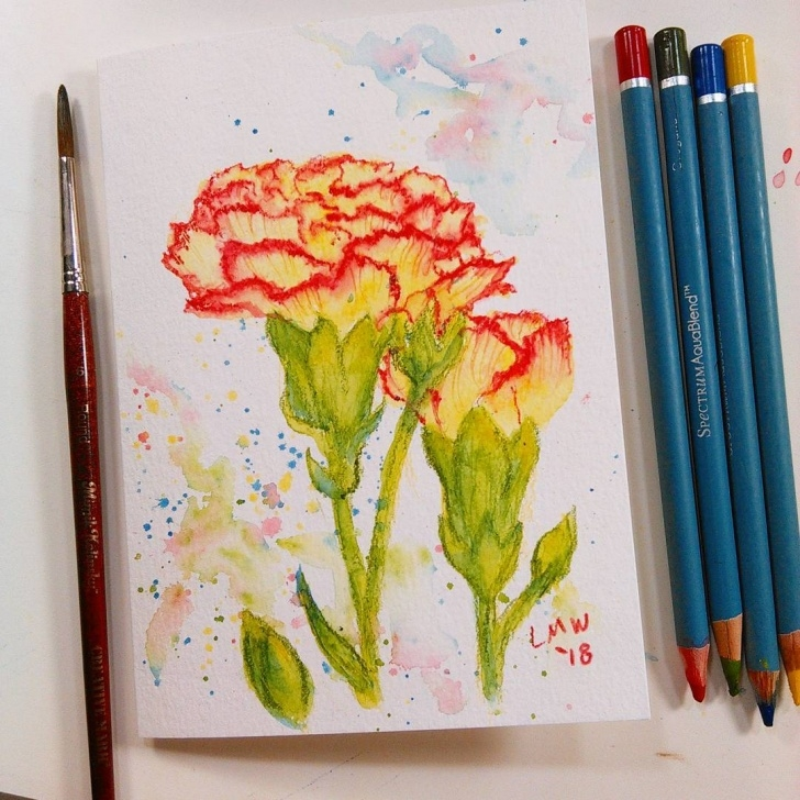 Stunning Watercolor Pencil Projects Easy Easy-Peasy Watercolor Pencil Project: Carnations! | The Frugal Photo