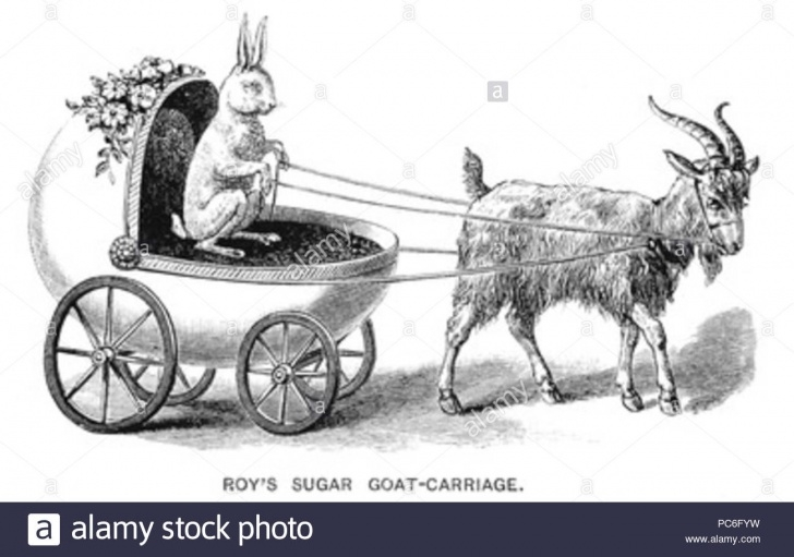 The Best Bullock Cart Pencil Drawing Techniques for Beginners Cart Drawing Stock Photos & Cart Drawing Stock Images - Alamy Photos