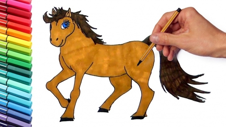 Horse Drawing Colour
