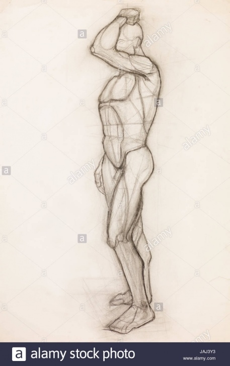 The Best Human Body Pencil Sketch for Beginners Human Body Muscles Pencil Drawing Stock Photos & Human Body Muscles Picture
