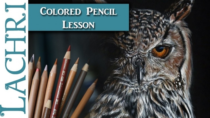 The Best Lachri Fine Art Colored Pencil Tutorial How To Draw A Realistic Owl In Colored Pencil - Lachri Pics