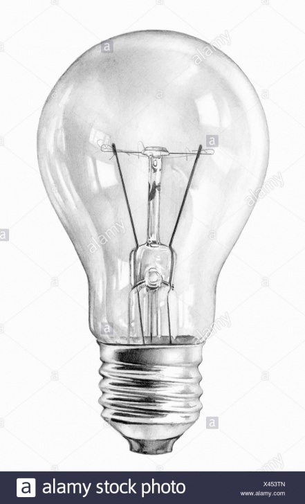 The Best Light Bulb Pencil Drawing Techniques for Beginners Close Up Pencil Drawing Of Filament Light Bulb Stock Photo Pics