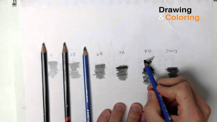 The Best Lightest Pencil Lead Step by Step Pencil Hardness | Drawing And Coloring Picture